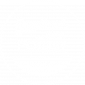logo_puor_WHITE.png